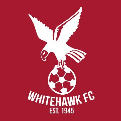 Getting to know: Whitehawk FC